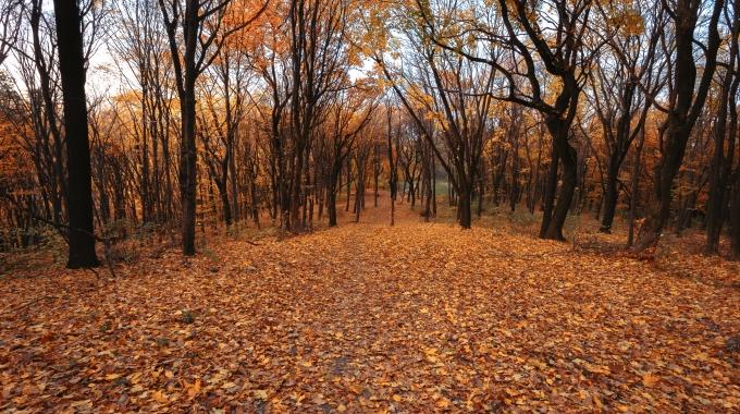Herbst – Nehmen Sie sich Zeit für Nostalgie